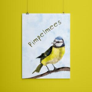 Miniposter A5 Pimpelmees