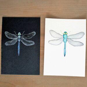 Kaarten libelle